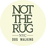 Not The Rug